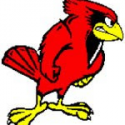 Hoover High Athletic Cardinal