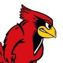 cardinal-profile