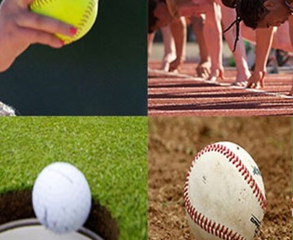Spring Sports Try Out Information