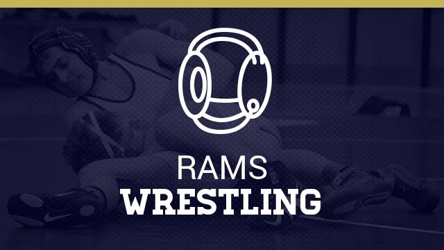 Wrestling falls to Peters Township in section finale