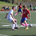 Boys Soccer vs. Laurel Highlands
