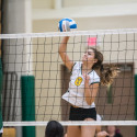 Volleyball vs. Alpena – Photo Gallery