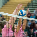 Volleyball – Gaylord at West – Photo Gallery