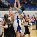 Varsity Girls Basketball vs. Troy 1-30-17 Pink Out