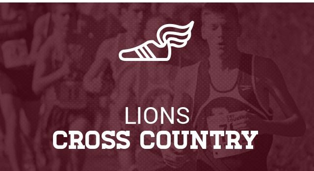 Cross Country Information