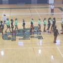 Girls Volleyball State Playoffs