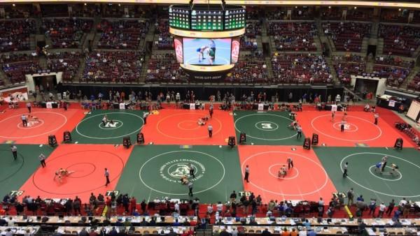wrestling state
