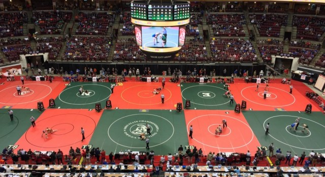Three STVM Wrestlers Place at OHSAA State