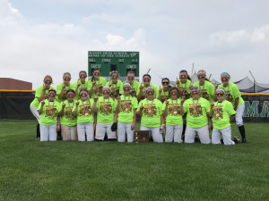 LWSB District Champion Picture