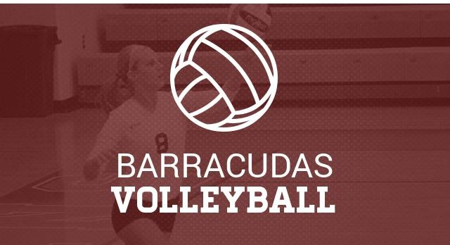 Volleyball Open Gym and Tryout Information