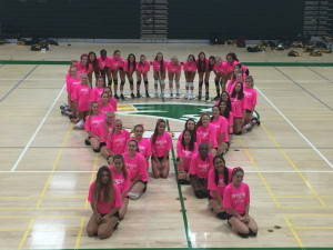 2017 Girls VB BC Awareness