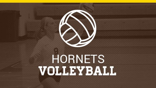 Pellston High School Girls Varsity Volleyball falls to Regional 3-1