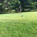 Boys Golf May 5-11
