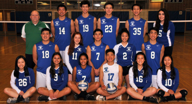 Coed Volleyball Falls in Final