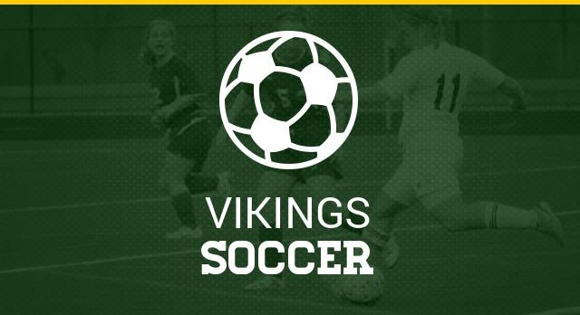 Soccer Advances to 2nd Round of States