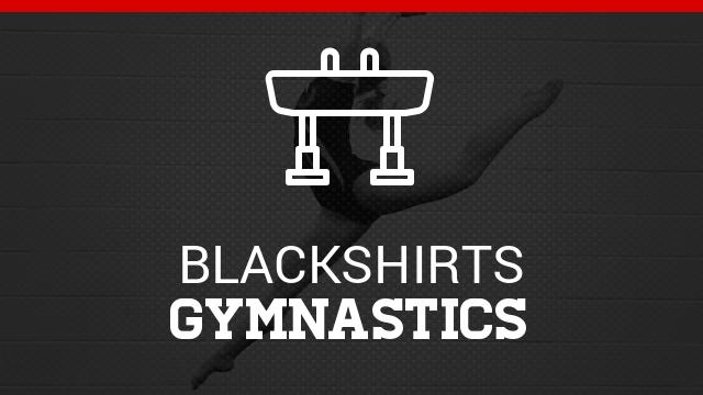 Welcome to Gymnastics – Team Information