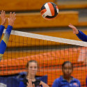 Westlake Girls Volleyball Pics