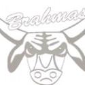 Brahma Watermark
