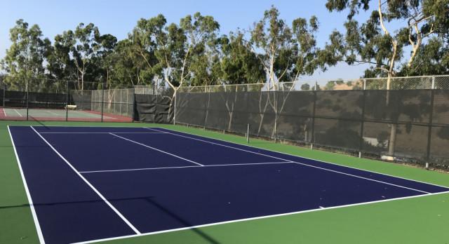 New Court Color #PurplePride