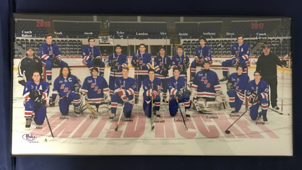 2016-17 hockey team