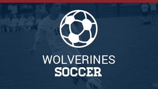 WHS 3v3 Soccer Tournament