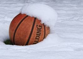 Image result for basketball in snow