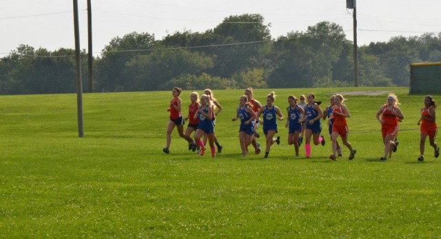 RS Cross Country competes in Rushville Invite
