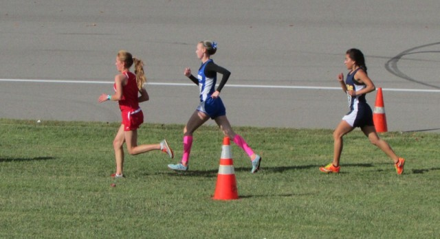 Cross Country wraps up Season with Solid Showing at D-3 Championships.