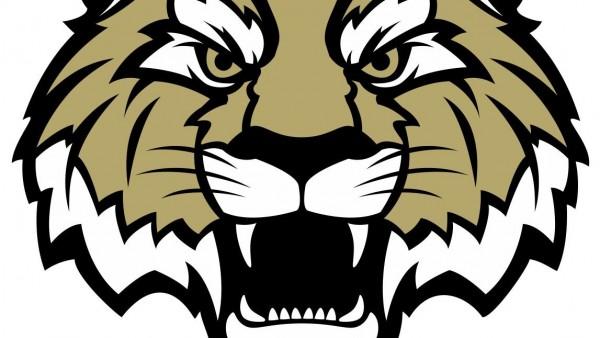 Tiger logo#1