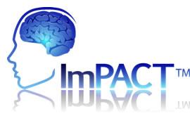 05c91a339b64d2a6-impact