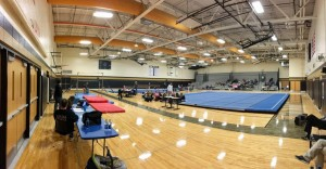 NEMS Gymnastics