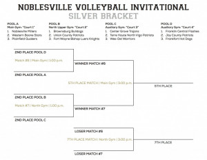 NHS VB Invitational Brackets - Silver