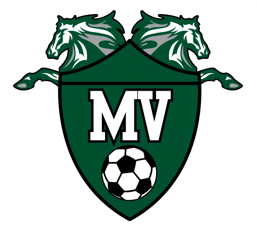 Mustangs defeat Irondale 3-1 in Section 5AA Championship Game, State Tournament Next