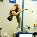 Diving vs Franklin – 2015-01-22