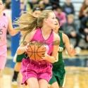 JV Girls Basketball vs Greenwood – 2016-01-08