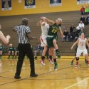 Lady Rams vs Grosse Ile  Feb 26, 2014 (District Semi final)