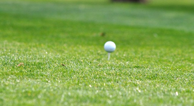 Lady Eagle Golfers defeated by East Noble