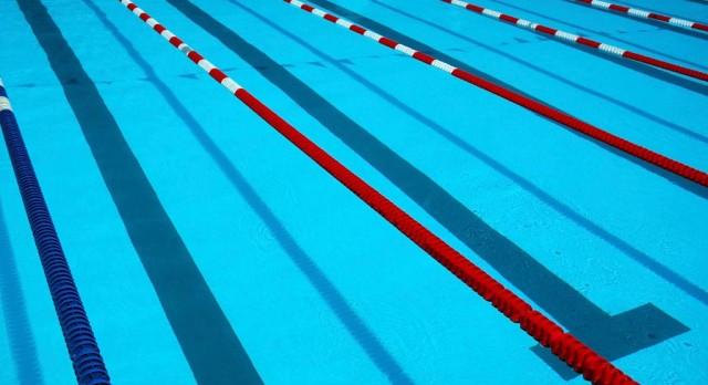 Swim Team had much success this season!