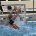 Groves Boys Water Polo, Fall 2014