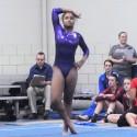 Gymnastics – 2015 Floor