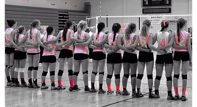 Volley For The Cure Raises over $2,500 for Breast Cancer!