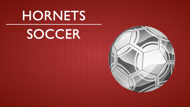 Rossville girls soccer advances in sectional