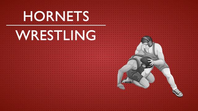 Hornet wrestlers defeat Gophers