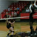 Photos from varsity volleyball match vs Norton