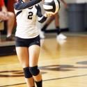 Volleyball v. Danville