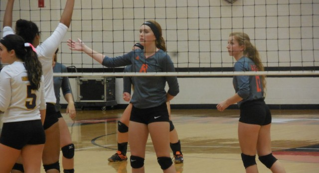 Volleyball: Saugatuck Quad