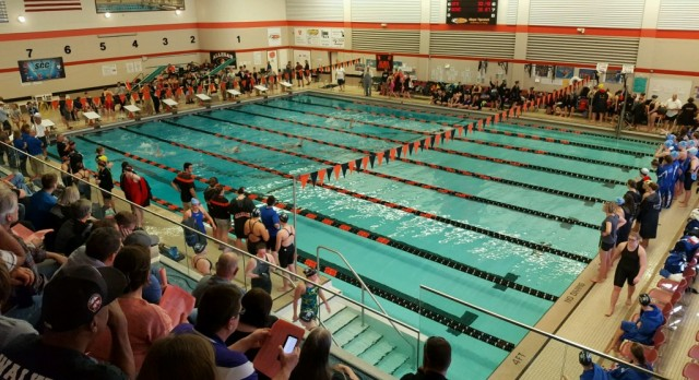 Girls Swimming: Conference Meet Recap