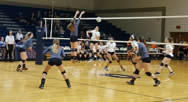 Volleyball Districts: Allegan 3 Fennville 0