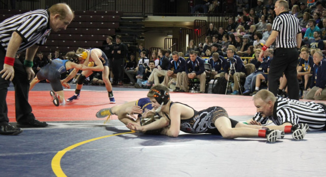 Wrestling: Tigers open with two wins