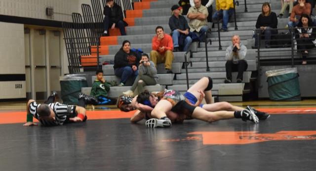 Wrestling: Schneider wins Regional; Tigers send three to State Finals